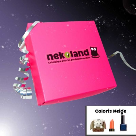 NekoBox Neige Box maquillage et nail art