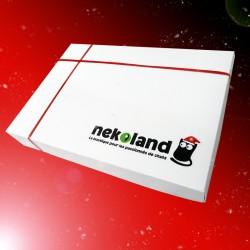 NekoBox de Noël Pour Mon Chat
