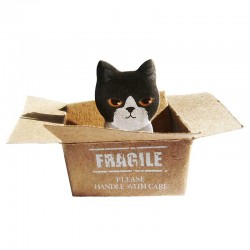 Post-it Chaton dans un Carton