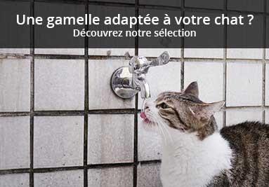 A la recherche d'une gamelle adaptée à votre chat ?