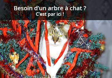 Un arbre à chat pour Noël ?